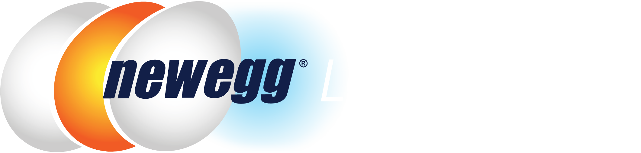 Newegg Logistics