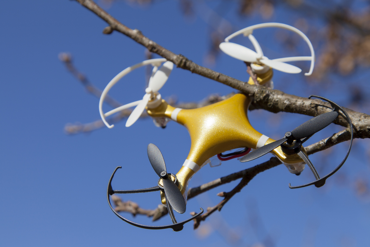 The Drone Delivery Challenge